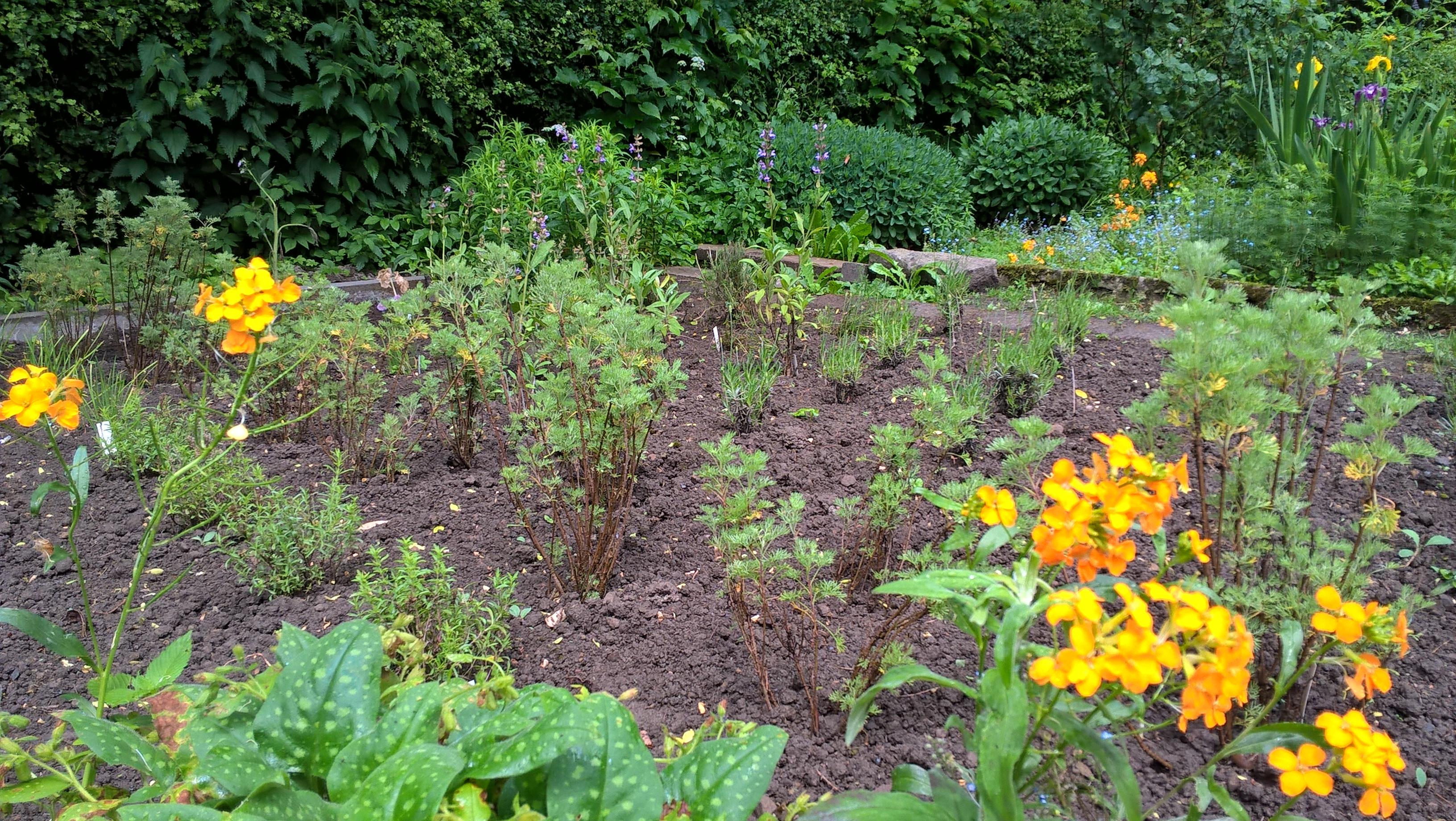 Bauerngarten Anlegen Welche Pflanzen: Freshouse