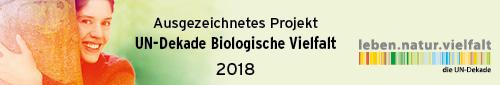161071_032_UN-Dekade_Logo_Ausgezeichnetes_Projekt-2018_500x85px